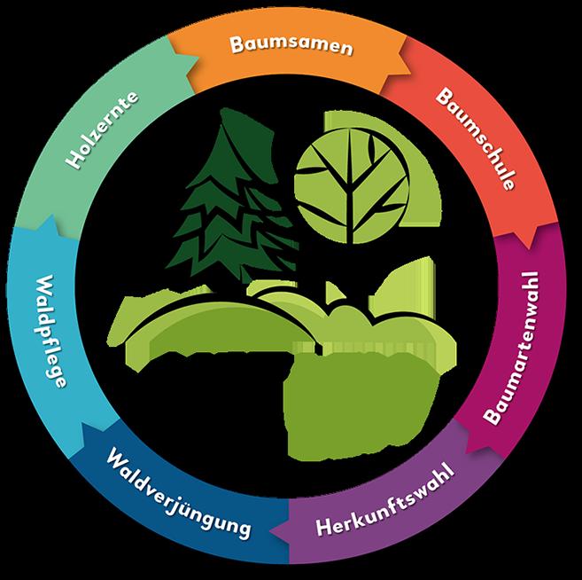 NETGEN Logo mit Zielen